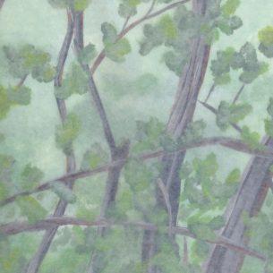 Acrylic painted background