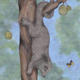Brave Bearcat