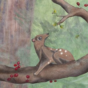 Children's book illustration of a flying lemur. These things are so cool!